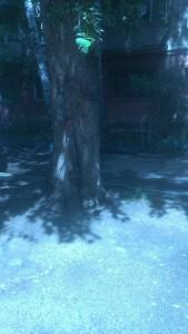 Фото 4 спил выкарчевывание тополя